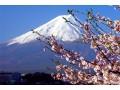 日本的富士山 (14)