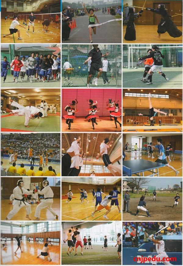八王子高中体育社团